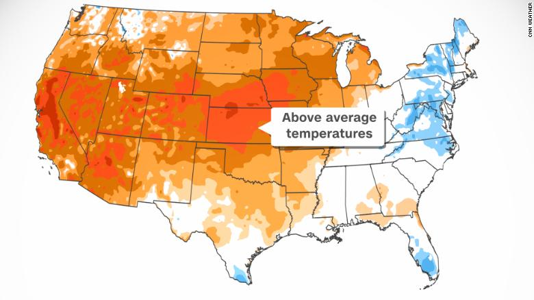 Us Heatwave - how Easydry can help your business
